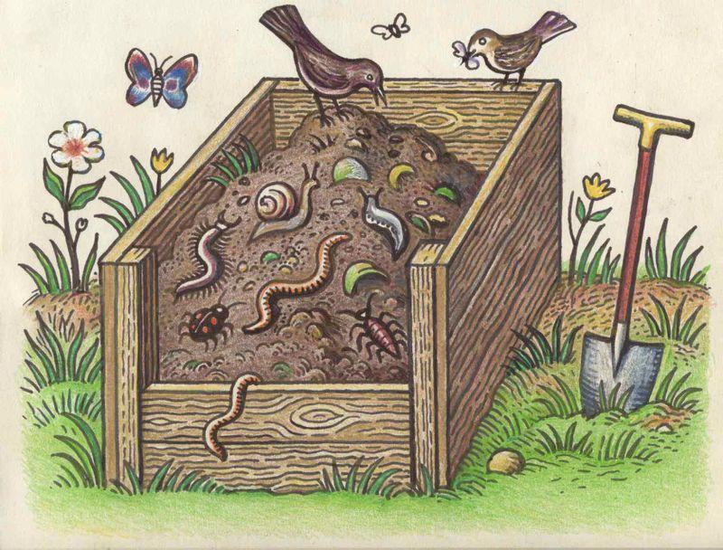 Wildlife-heap
